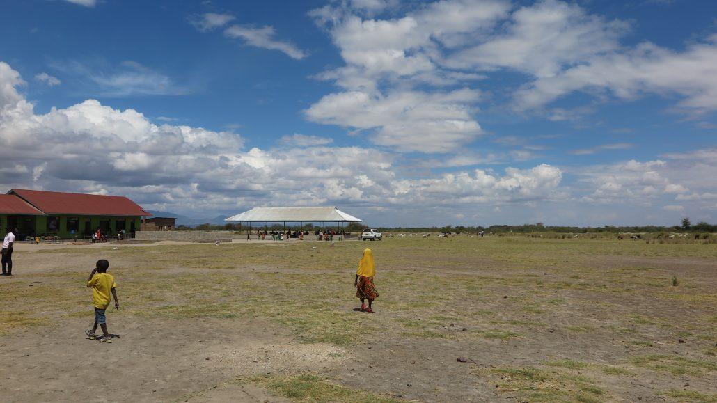 Tanzania Mikocheni 2017